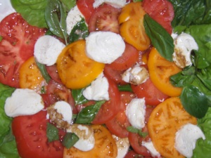 Tomatoes and Mozza